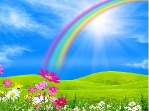 Sky, Flowers, Great Rainbows, Meadow
