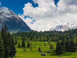 Mountains, Meadow, huts, forest