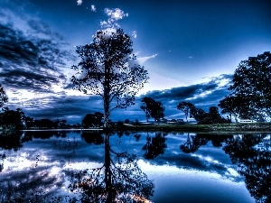 clouds, viewes, lake, trees