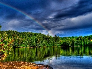 forest, Great Rainbows, lake