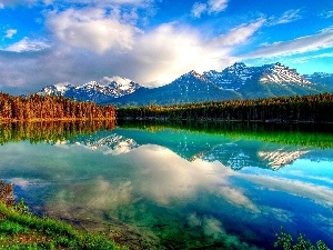 Mountains, woods, lake, clouds
