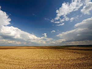 Sky, Field, land, clouds