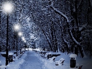 viewes, Park, lanterns, winter, bench, trees