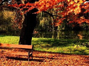 Leaf, autumn, River, Bench, Park
