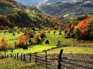 medows, autumn, woods, field, Mountains