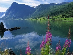 lake, Norway, Mountains, Jolstravatnet