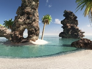 rocks, Beaches, Palms, sea