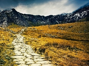 Path, Mountains, Meadow