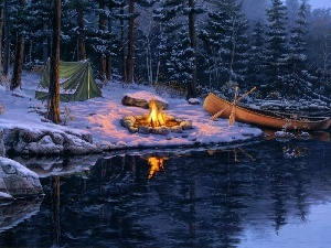 picture, Darrell Bush, lake, fire, forest