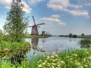 Plants, Windmills, River