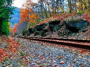 ##, railway, Colours, autumn, color