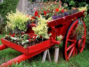 Red, circle, wagon, Flowers, flowerbed