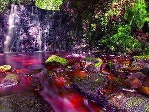 red hot, water, ##, Forest, waterfall