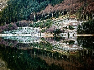 Mountains, water, reflection, woods