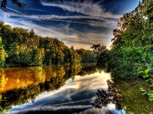 reflection, River, woods