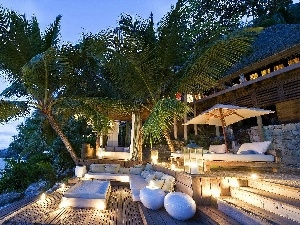 Hotel hall, Palms, sea, Coast