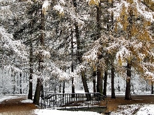Park, first, snow, bridges