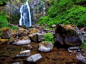 forest, rocks, Stones, waterfall