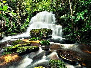 Stones, jungle, waterfall