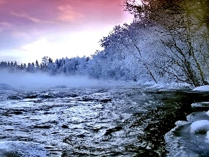 stream, winter, rapid