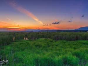 Great Sunsets, marshland, grass, clouds