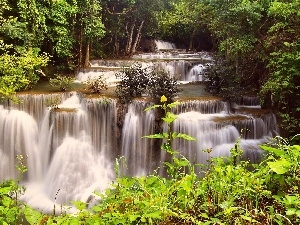 forest, cascade, Thailand, waterfall