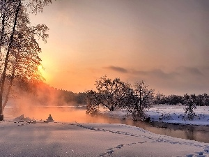 River, dawn, viewes, forest, winter, trees, Fog