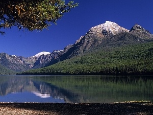 Mountains, coast, trees, lake