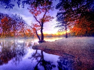 Park, autumn, trees, viewes, color, River