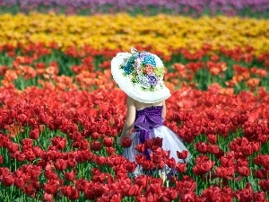 girl, Field, tulips, hat