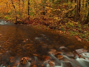 viewes, autumn, Stones, trees, River