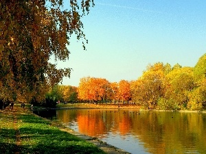color, Park, viewes, autumn, trees, River