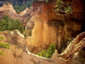 canyon, trees, viewes, rocks
