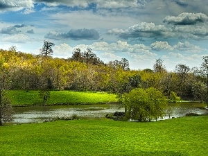 viewes, clouds, Meadow, trees, River