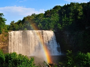 viewes, forest, Great Rainbows, trees, waterfall