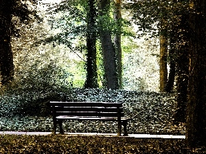 Park, trees, viewes, Bench