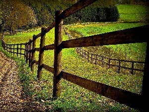 Way, trees, viewes, fence