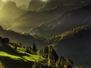 Meadow, Mountains, viewes, Way, trees, farm