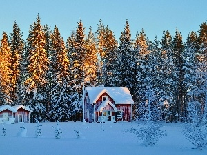 winter, Houses, light breaking through sky, The Forest Wall