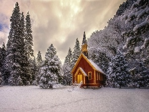 forest, Spruces, viewes, State of California, chapel, winter, trees, The United States, Yosemite National Park, church