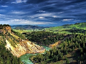 woods, Sky, canyon, Mountains, River