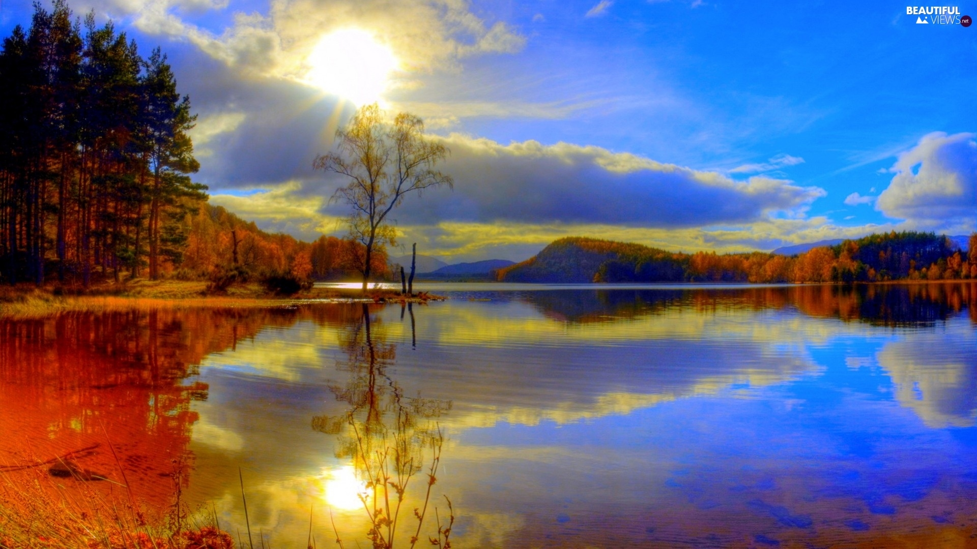 lake, reflection, autumn, forest