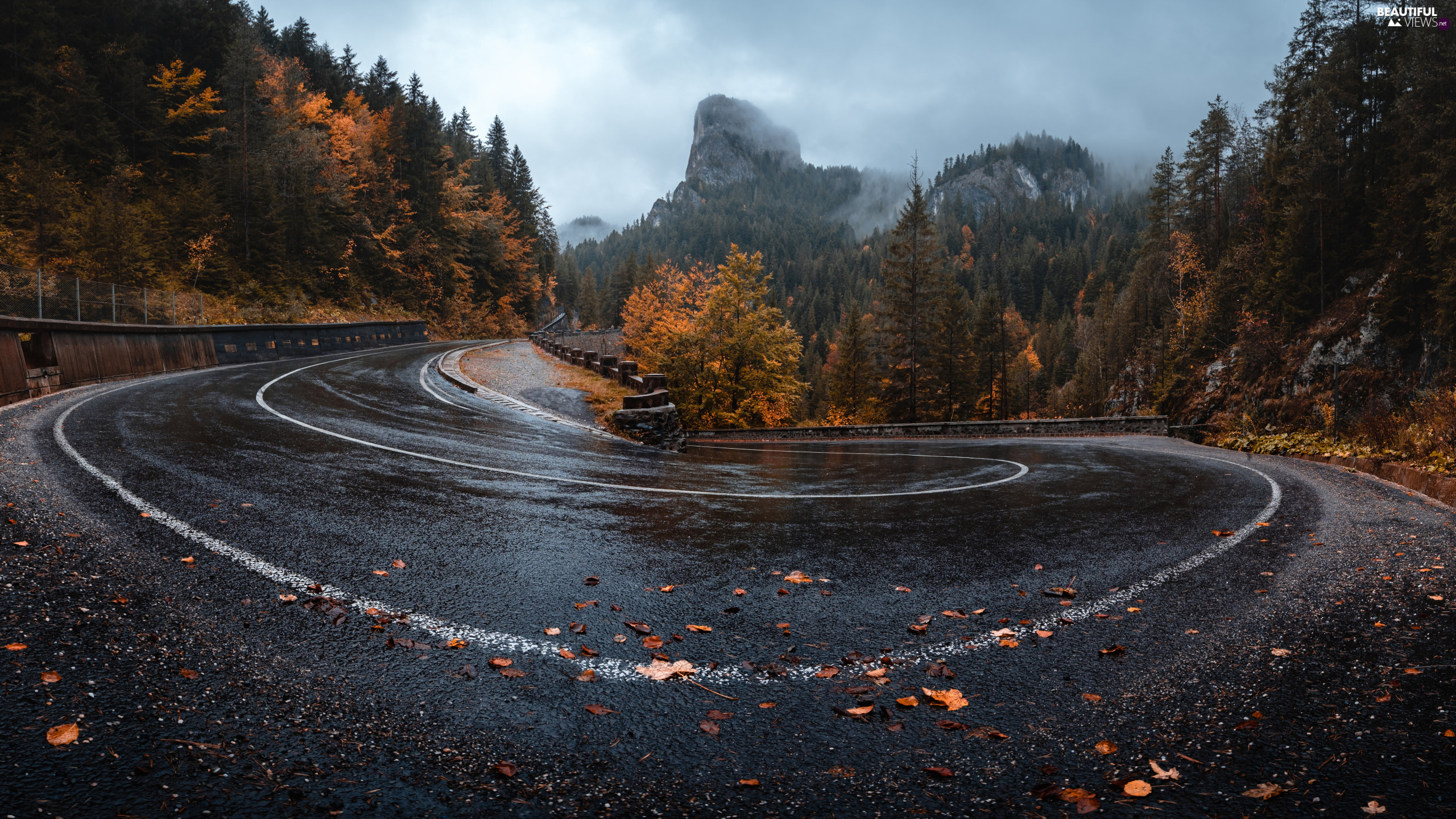trees, Way, Mountains, autumn, viewes, turn