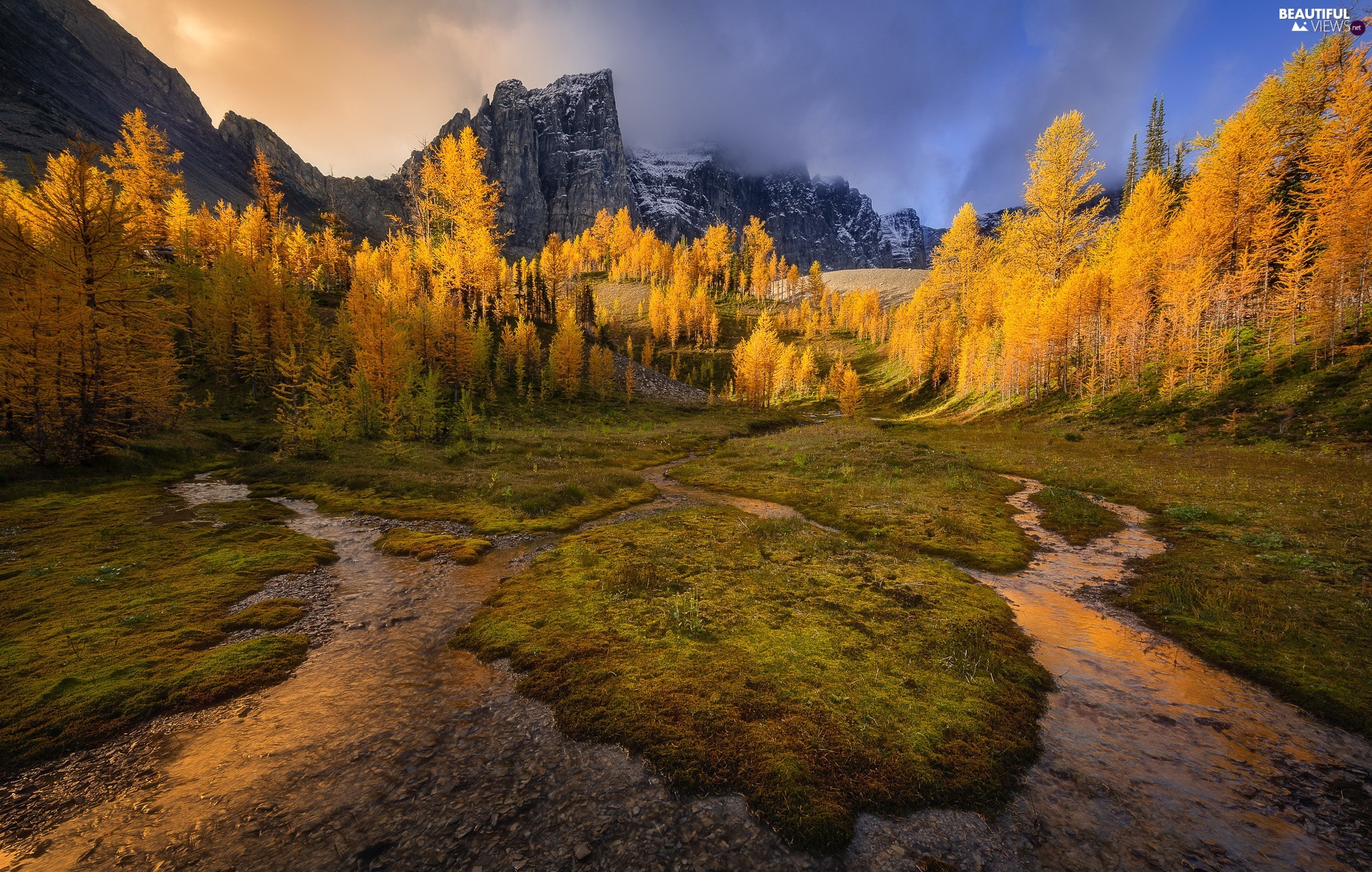Mountains, trees, River, autumn, stream, viewes