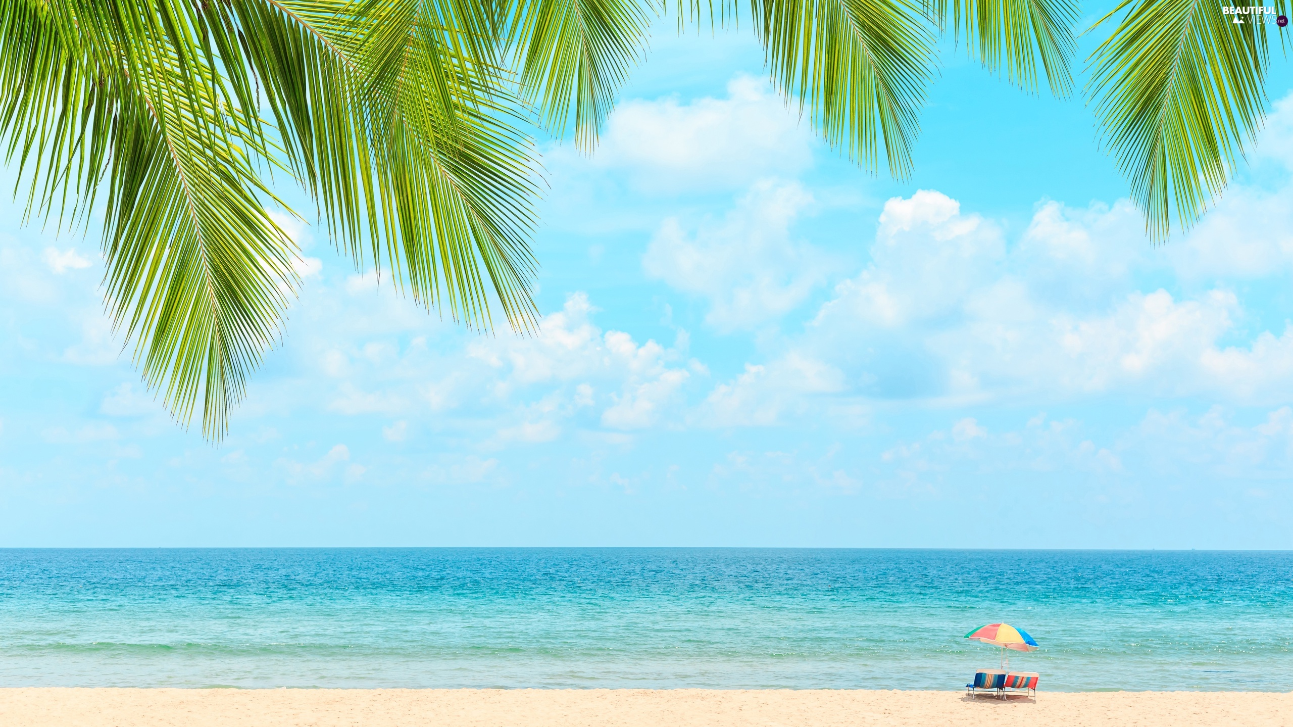 Beaches, sea, deck chair, Umbrella, Palms, holiday, clouds, Leaf, Sky