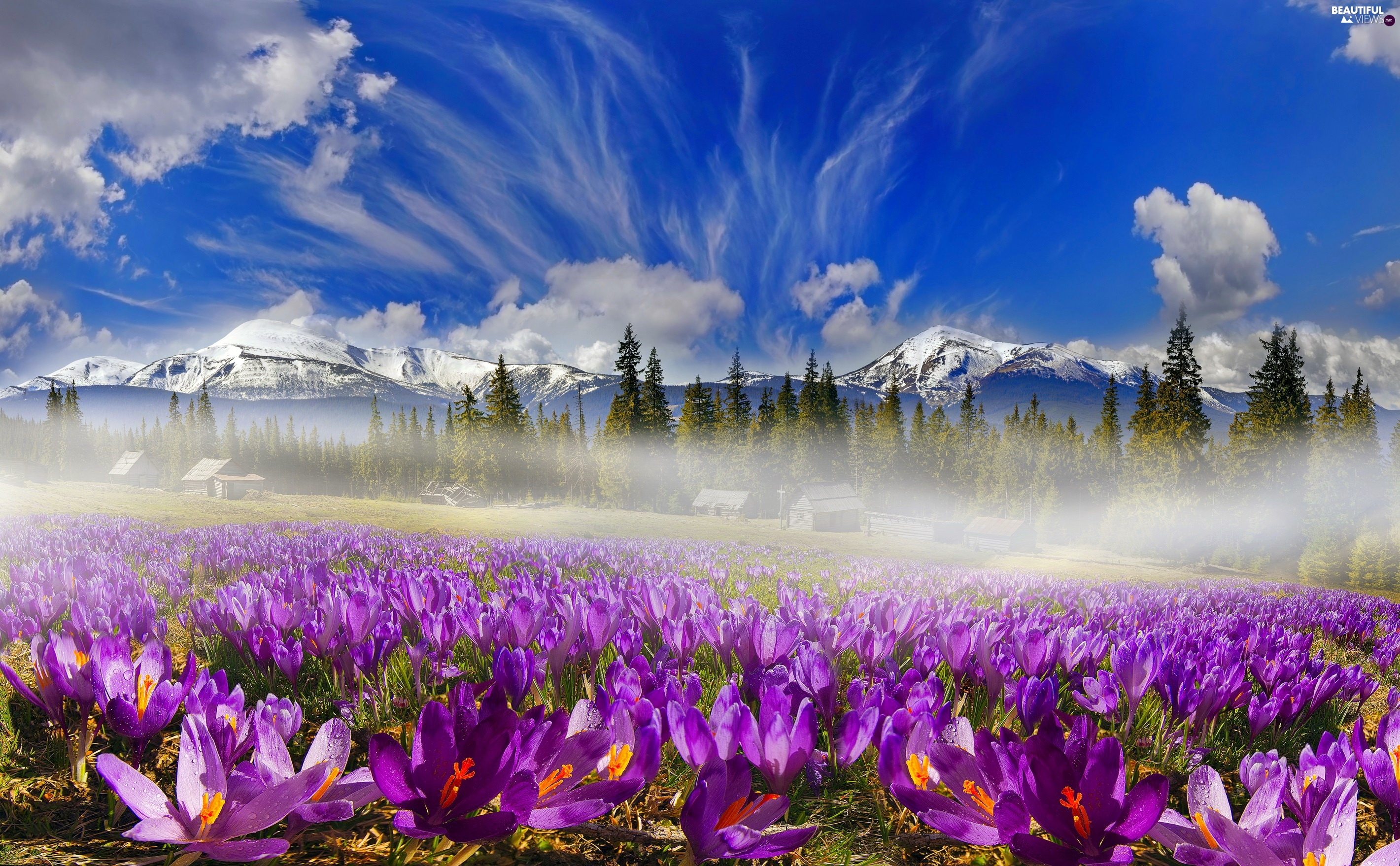 Houses, Mountains, Spring, Sky, Fog, Meadow, crocuses, clouds