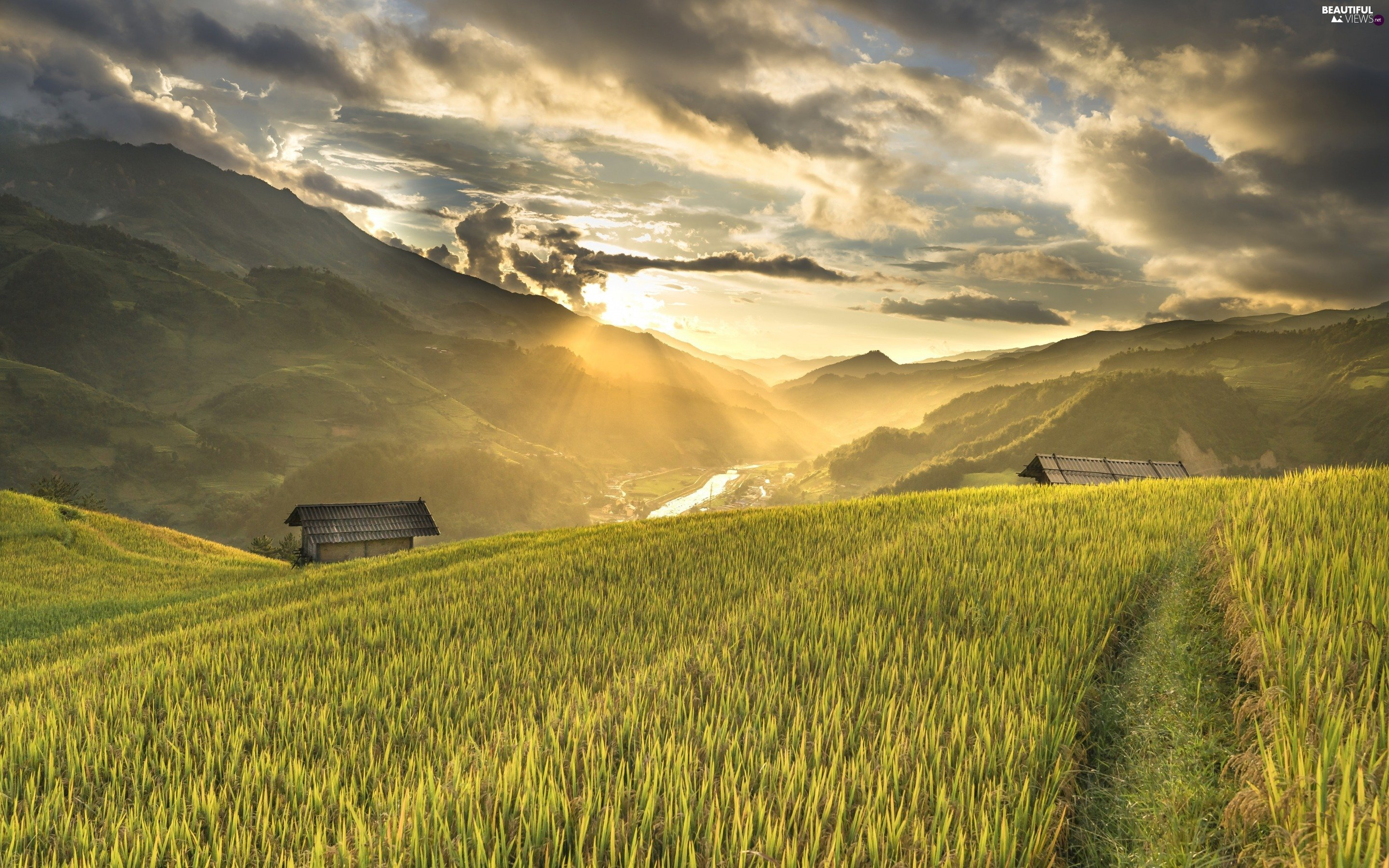 Field, cultivated, Mountains, clouds, Sunrise