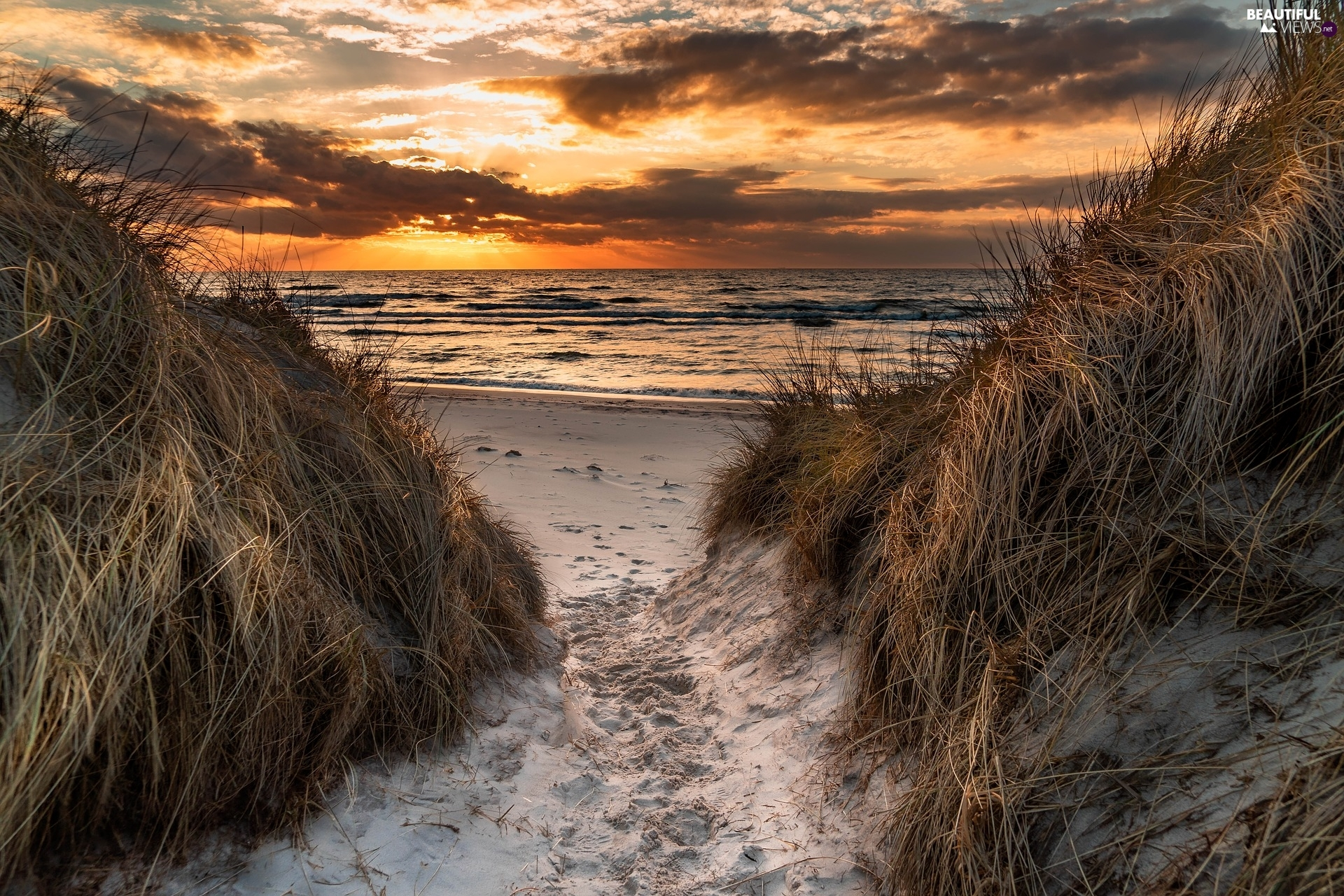 Beaches, Great Sunsets, Dunes, grass, Wooded, sea