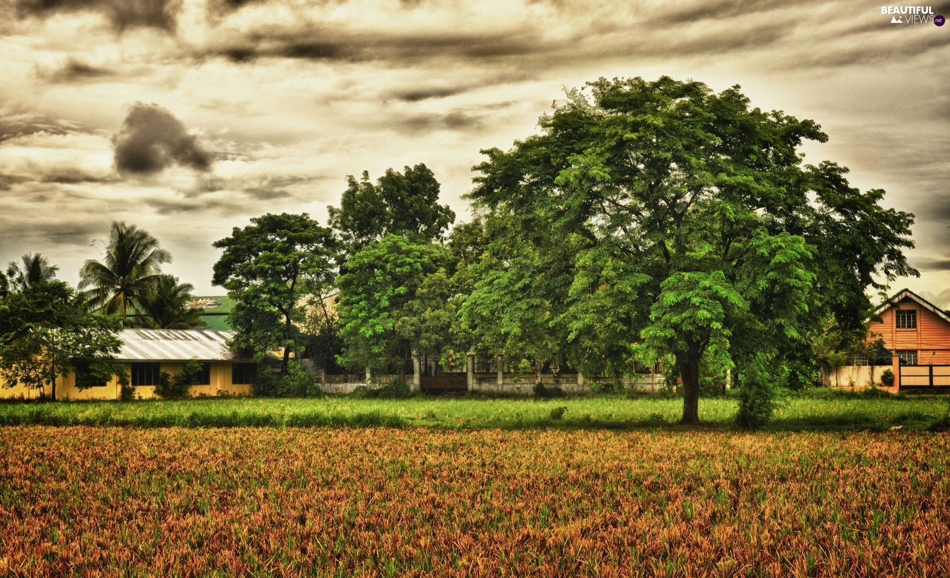 trees, clouds, farm, viewes
