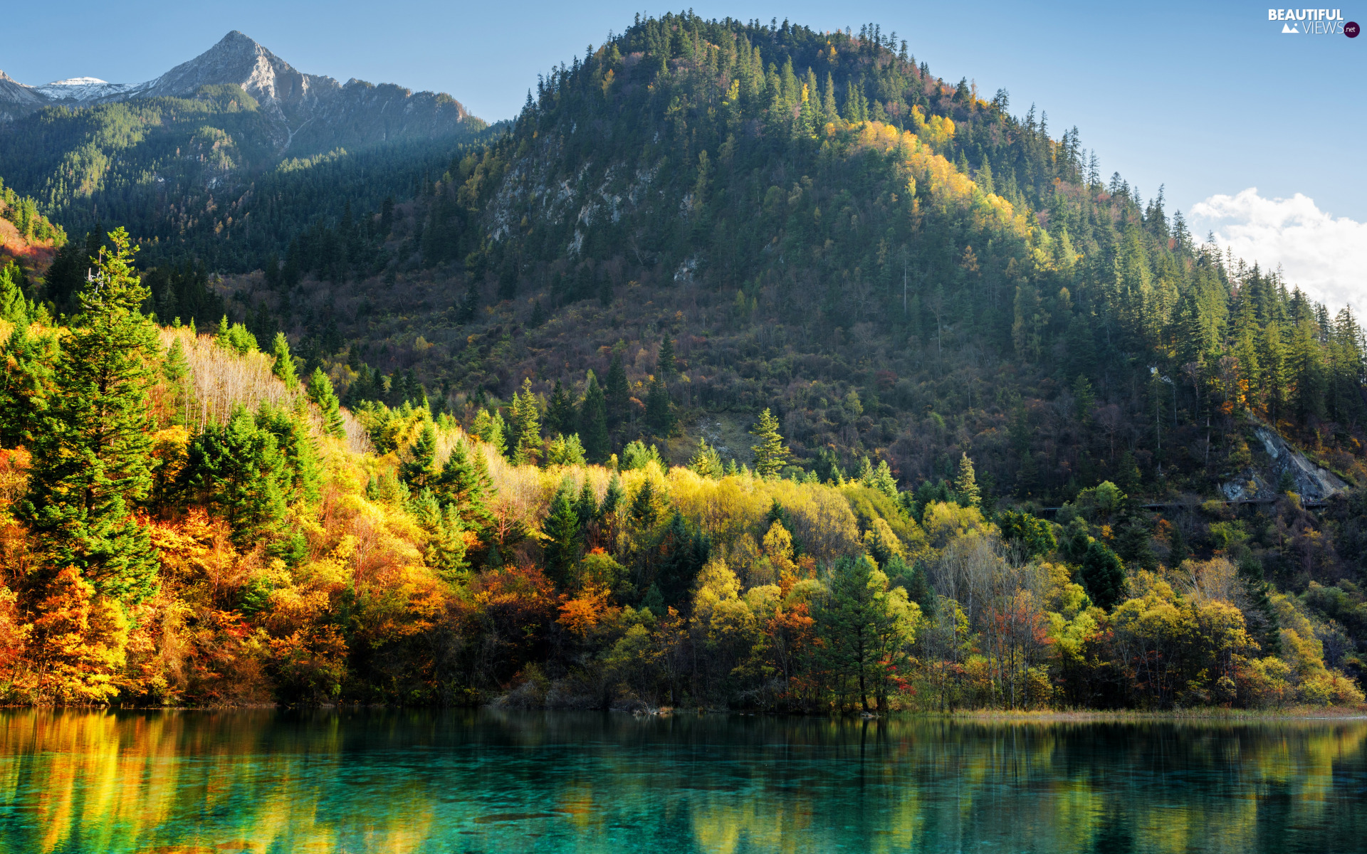 forest, Mountains, China, Wu Hua Hai Lake - Five Flowers, viewes, autumn, Jiuzhaigou National Park, trees